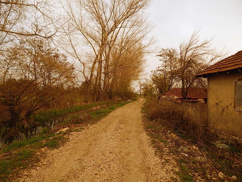 Kružni put oko Kasarne pirot